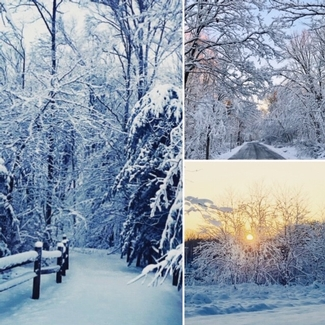 Three diffferent winter views within parks