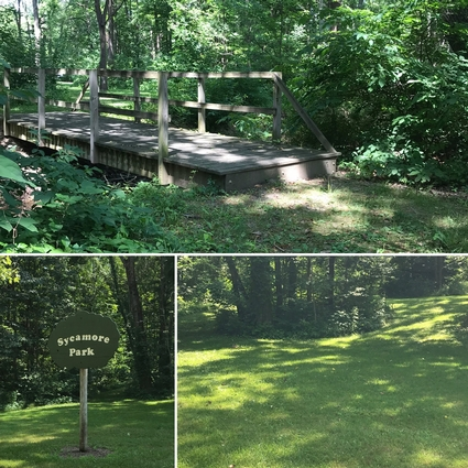 Three views of this walking Park showing the lush trail