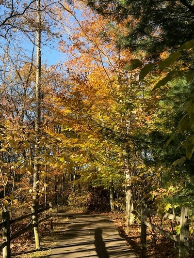 walking path at Fred Greenwood in late fall